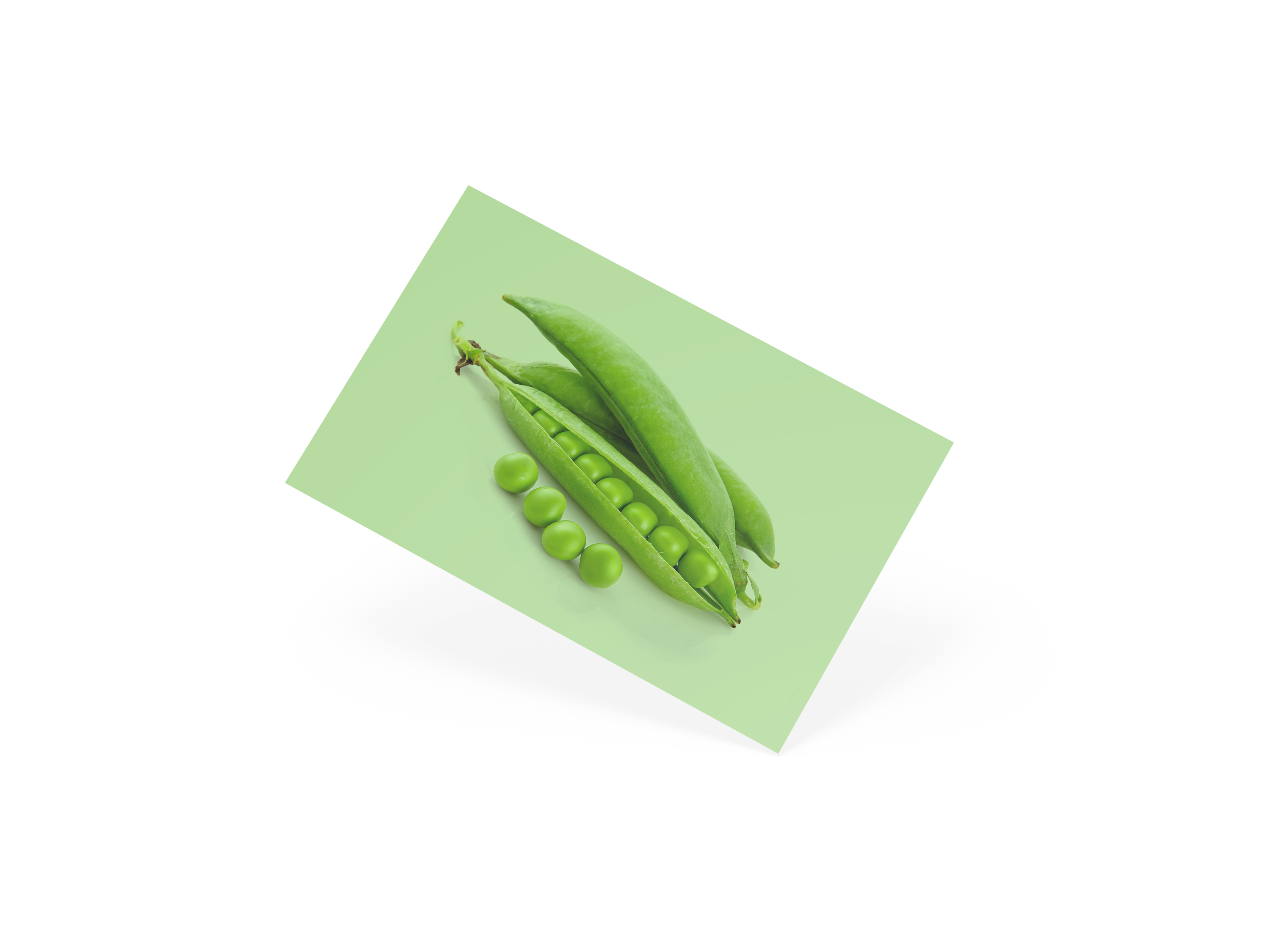 Business Card Peas